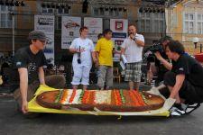 PELHŘIMOV - MĚSTO REKORDŮ 2011 - kliknutím na fotku zobrazíte článek